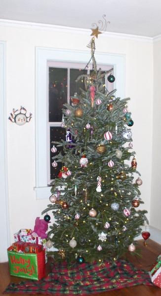 A Douglas fir tree carefully decorated for the Christmas season