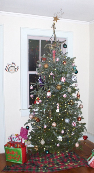 A Douglas fir tree carefully decorated for the Christmas season