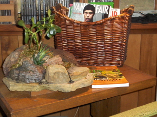 A truly portable rock garden.  Who would have thought it?