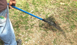 Rake the soil after putting down the seed and fertilizer.  Bring the seed into contact with the ground