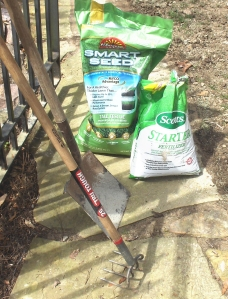 Starter fertilizer, turf-type fescue seed, a potato hoe, and a rake--that's all you need