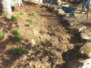 Sometimes it is best to just get rid of the old dirt and start over.  We will pile it high with good stuff.