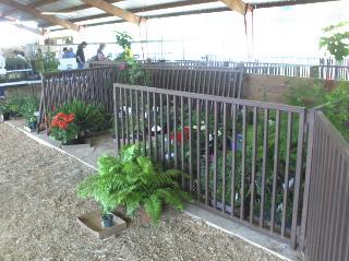 The holding area became a garden
