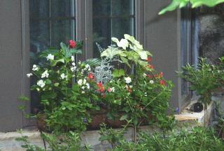 Mrs. Fletcher's window planter