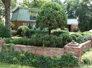 a well sculptured garden