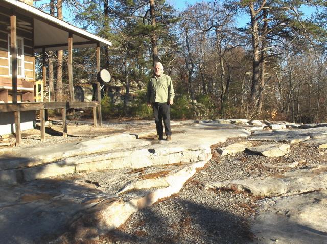 a no maintenance front yard
