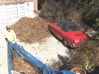 Piling up landscape waste for removal