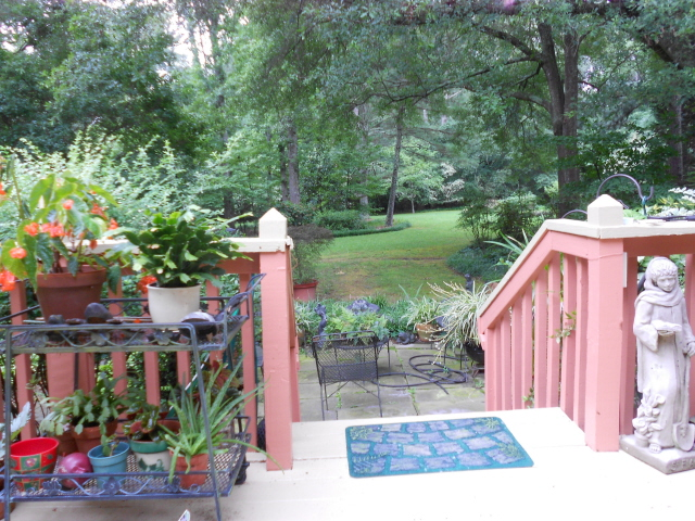 Micky's beautiful back yard from the deck