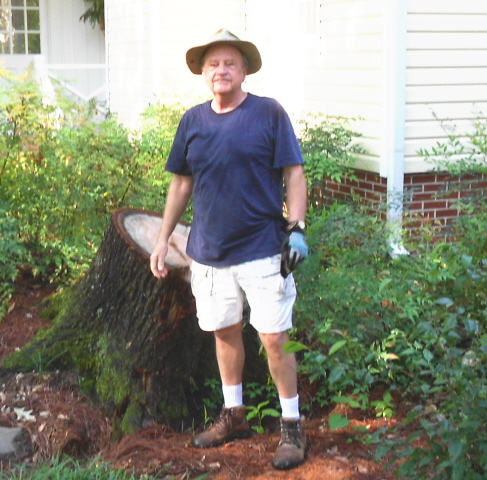 dealing with the stump from an uprooted tree presents problems