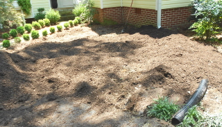 Spreading compost and building a mound. Note drain pipe from downspout