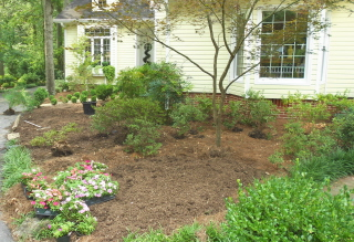 flower bed preparation with mounded compost