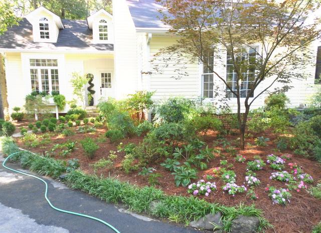A beautiful new garden instead of a tree stump. Fair exchange?