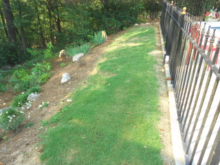 Rock garden steps with a retaining wall--part one (4/6)