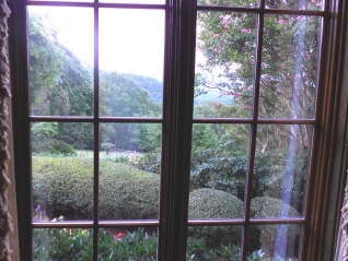 The pruning has opened up the view of the mountain from the living room