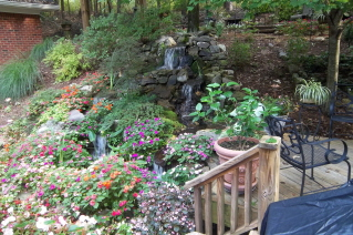 View of the waterfall from the back yard deck
