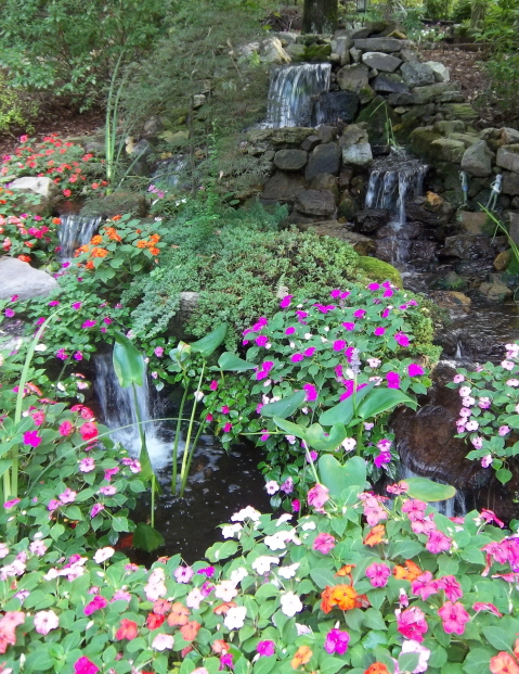 Impatiens flourish around the waterfall in late September