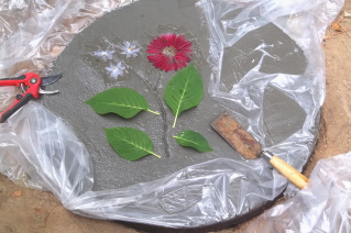 Flowers in a stepping stone
