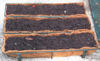 fiber lined window boxes ready to plant