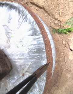 pull the barrel ring from the dry stepping stone