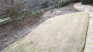 Time to clean the flower beds and get ready for spring flowers