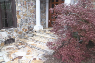 The beautiful Japanese maple has been pruned away from the entrance