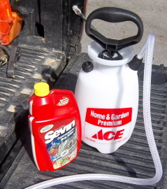 spray inch worms with liquid sevin
