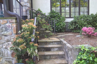 porch entrance-early spring with pieris