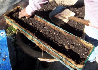 add high quality potting soil to the planter