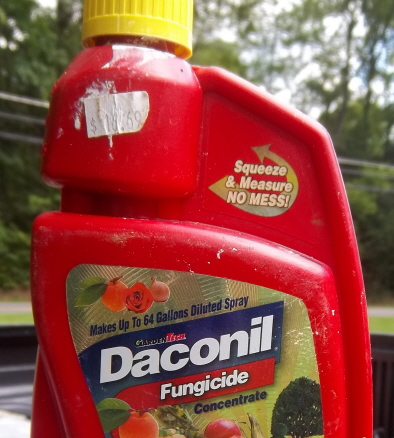 Daconyl, a very effective fungicide purchased at Home Depot