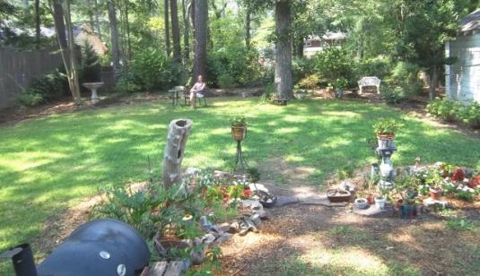 shade garden preparation, 'before'  picture