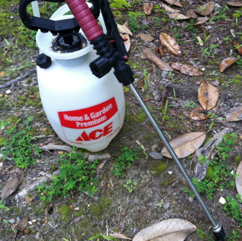 one gallon pump sprayer