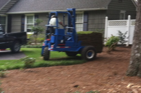 sod delivery on site