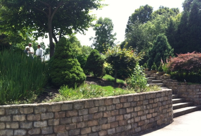 """A """"river bed"""" of steps leads down through the garden to the drive way."""