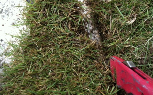 A razor knife (or box cutter) is an ideal tool for trimming newly installed sod next to