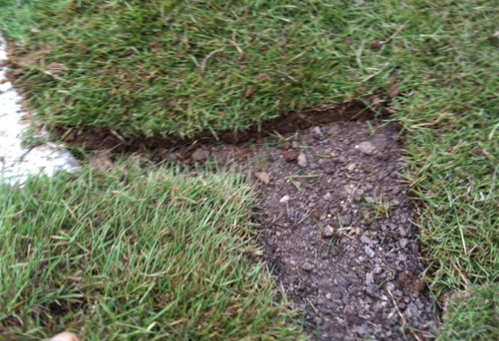 Use scraps from the sod trimming to fill open spaces--just like a jigsaw puzzle.