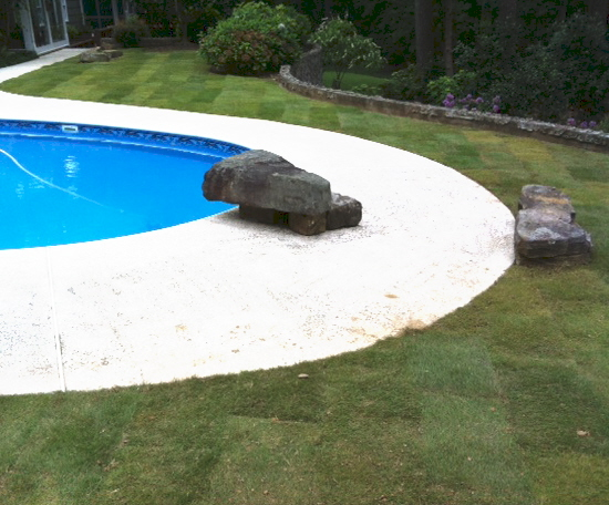 The final task of the sod job is to water and then stand back and admire the finished product.
