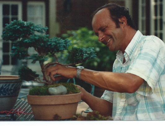 "John Schulz starting a bonsai of a cameocyperus ""boulevard"" in 1991"
