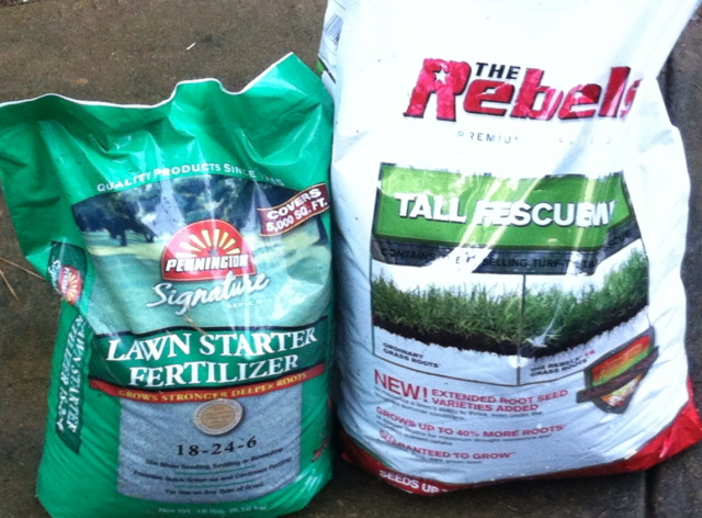 Turf-type fescue seed and a good starter fertilizer.