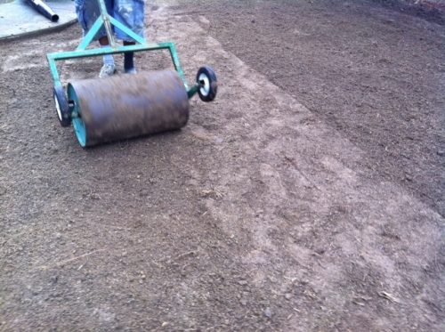 A roller will pack the soil, mash out air pockets, and level things out.