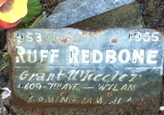 Here lies Ruff Redbone, a most special and loving coon hound.