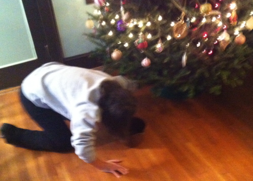 I found poor Sweetie down on her knees wondering how she would get water to the base of the Christmas tree