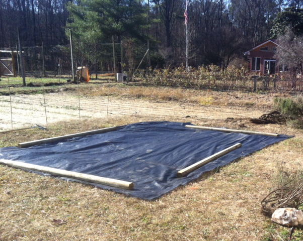 We start the herb garden project with a large piece of nursery ground covering and a whole lot of pondering.