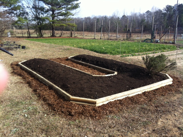 The completed bed for the herb garden with compost and cypress mulch. Ready to plant