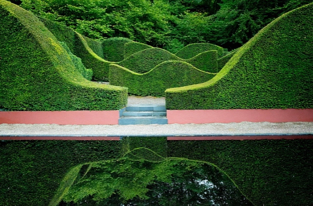 Cloud pruning picture by Jake Hobson showing beautiful abstract shrubbery shapes