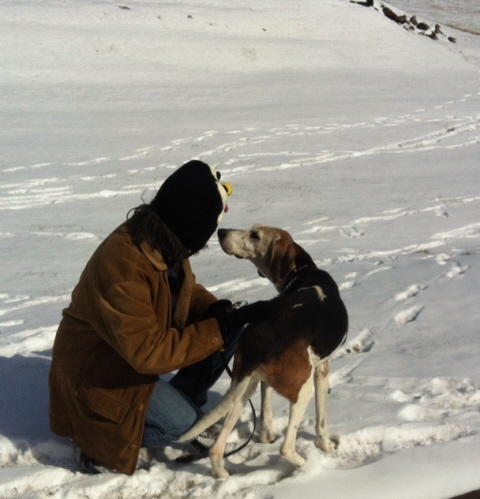 Dog lovers, here's a purebred Treeing Walker Coon Hound in the snow. The one on the left is my wife.