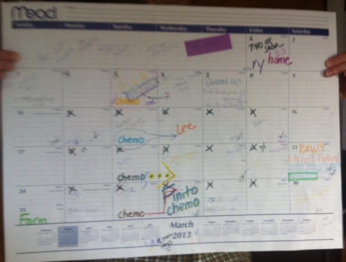 Desk calendar for March 2013. The dates marked X are the radiation treatments.