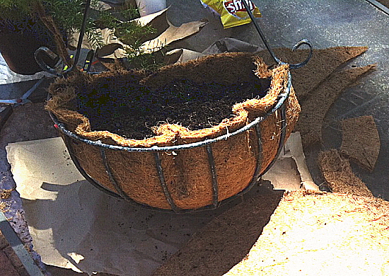 Pack in moist potting soil to hold the coconut fiber mat securely in place