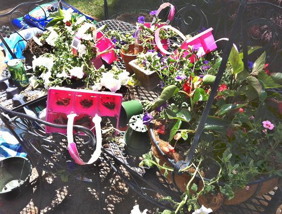 A good planting job calls for a good mess.