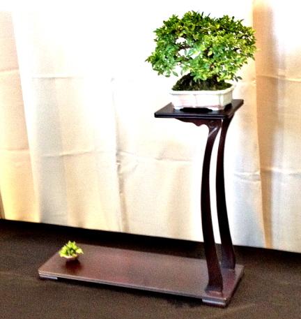 bonsai arrangement on a formal stand