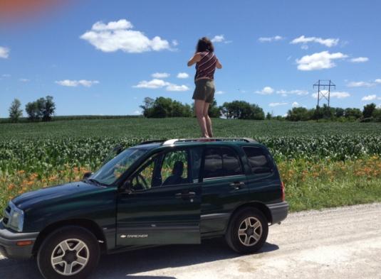 Iowa corn fields with day lilies